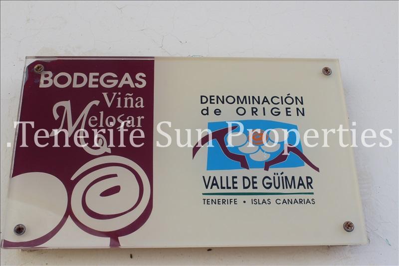 arafo vineyard (2)