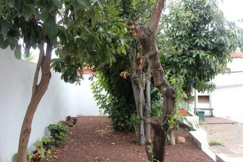 tacoronte house (28)