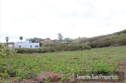 land tacoronte