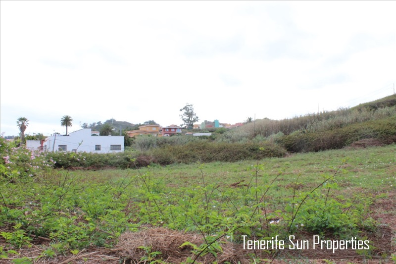 Land for Sale Tacoronte, Tenerife