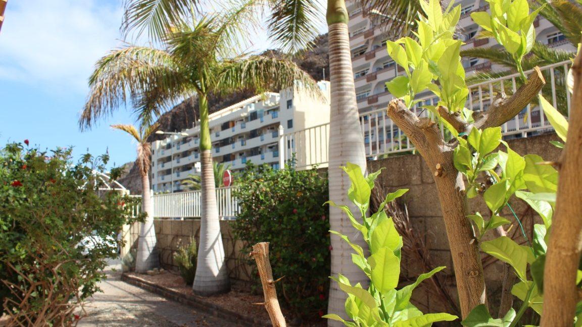 villa palm mar (2)