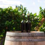 Tenerife Wine Route