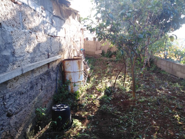 house in victoria tenerife (10)