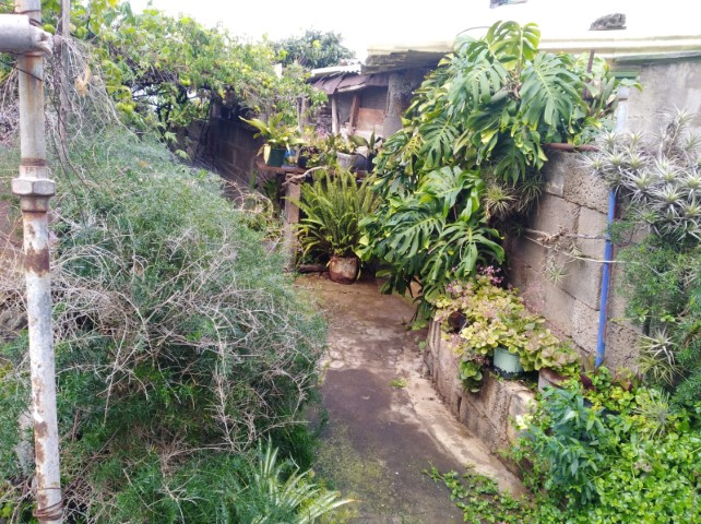 house in victoria tenerife (2)