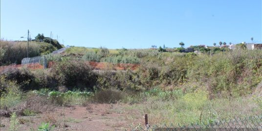 Land for sale Tacoronte