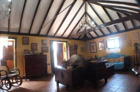 canarian house puerto de la cruz
